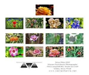 Flora-Calendar-back